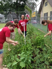 CBU students working in the Peabody garden
